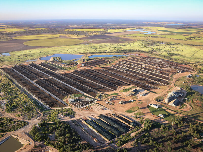 Stanbroke feedlot in southern Queensland