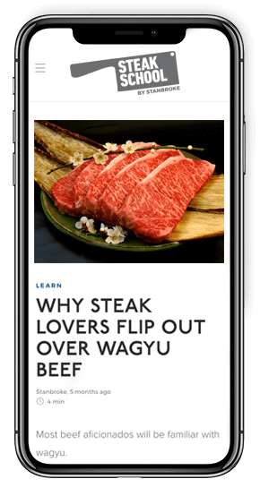 Steak School on iPhone X