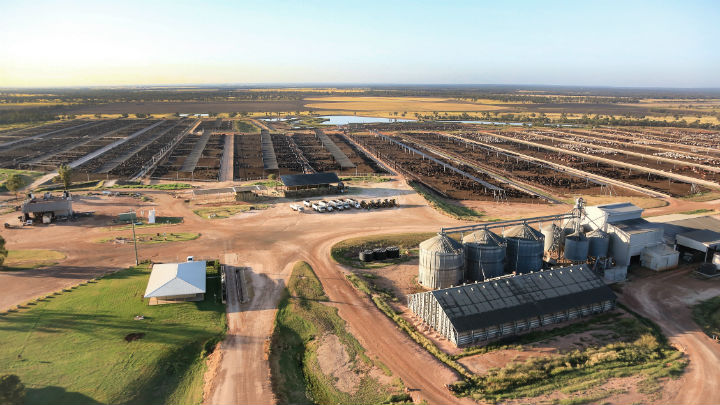 Stanbroke feedlot property